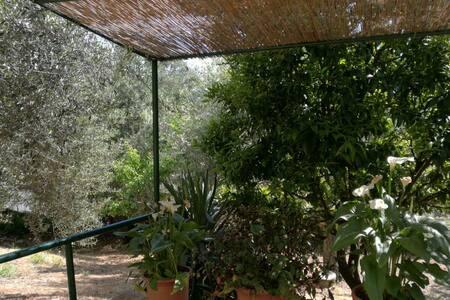 Casa Vacanze in Maremma - Caldana - 独立屋