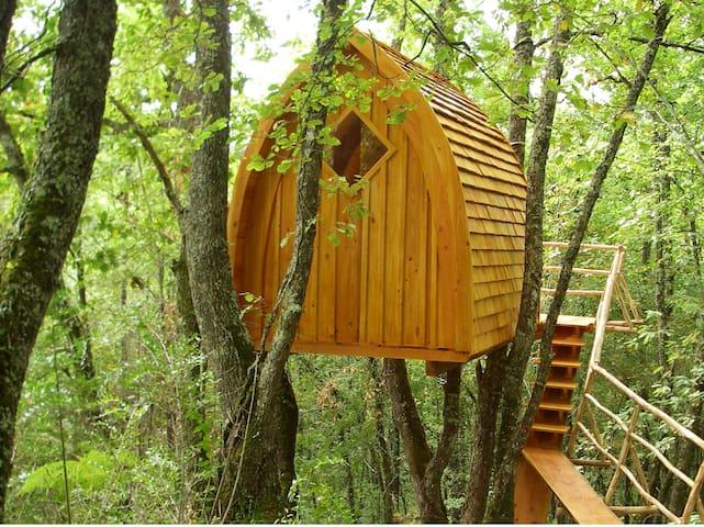 """La Cabane """"Chapelle"""" perchée dans les bois - Puycelci - Apartamento"""