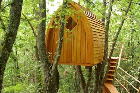 """La Cabane """"Chapelle"""" perchée dans les bois - Puycelci"""
