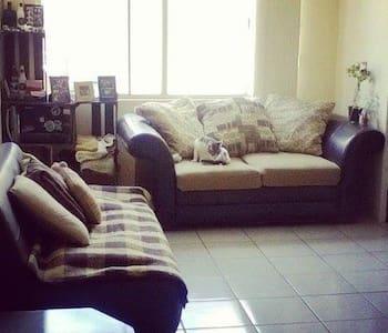 Futon in my living room. - Tijuana - Appartement