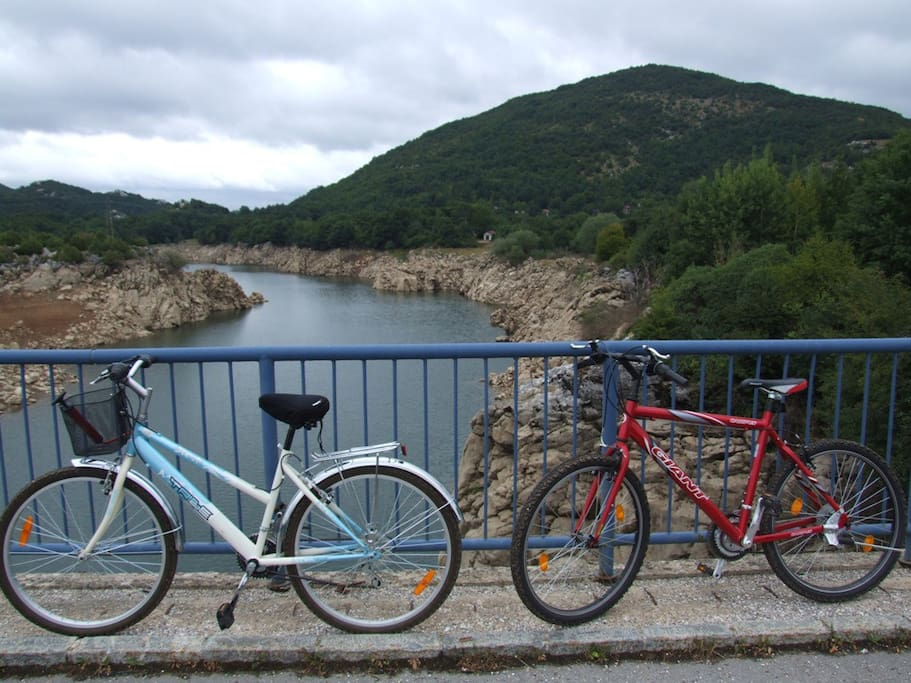 free rental bicycles