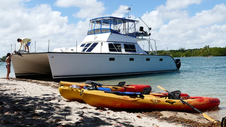 Large Catamaran with 4 Staterooms stay up to 8pax
