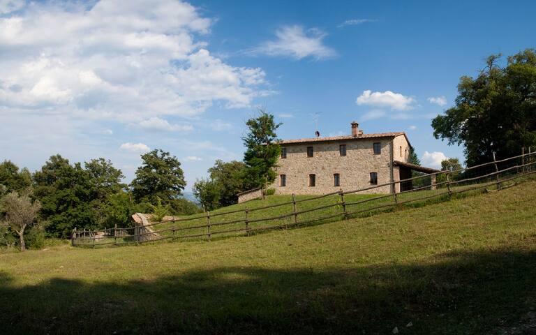 Casa nel bosco:Logge Vecchie