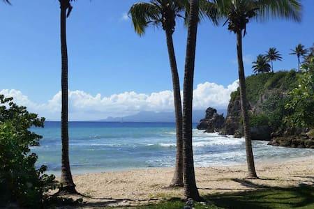 Grand T2 sans vis à vis avec accès direct plage...
