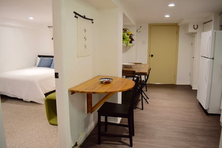 Newly renovated apartment in heart of the Annex