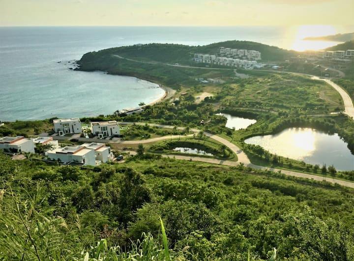 Olala View - Peace