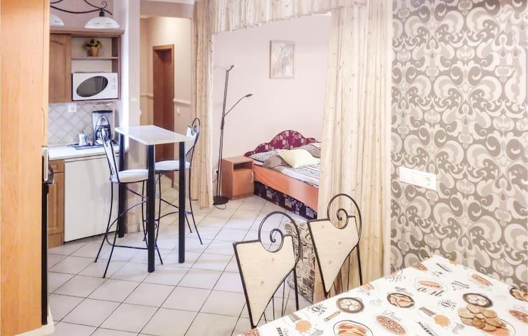 Holiday apartment with 1 bedroom on 50m² in Hajdúszoboszló