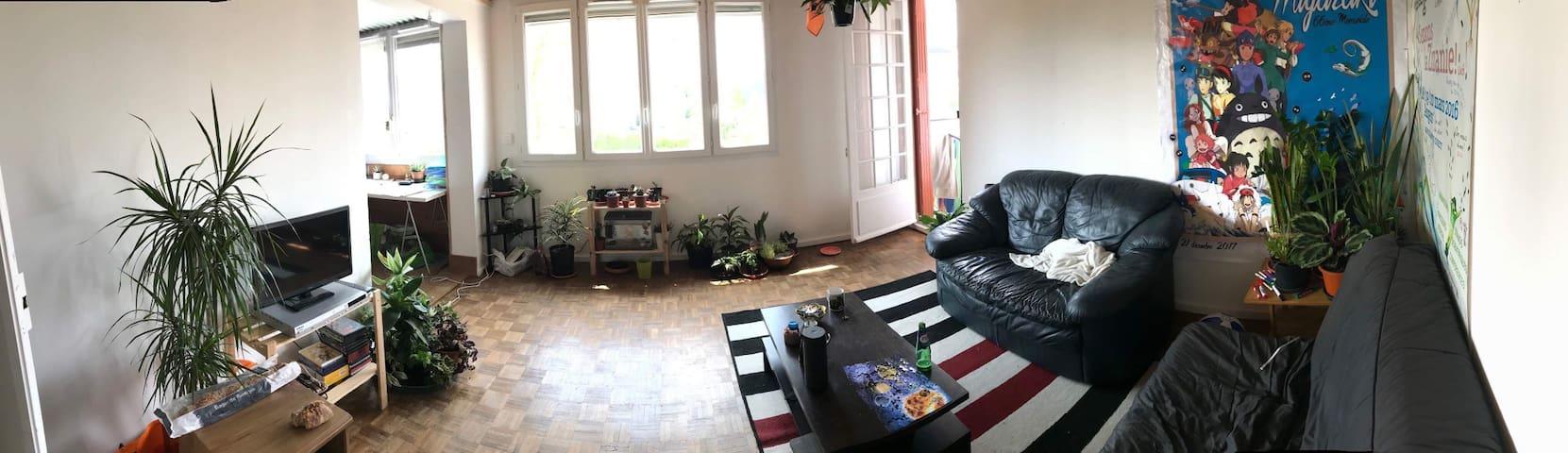Appartement cosy proche des parcs et du centre