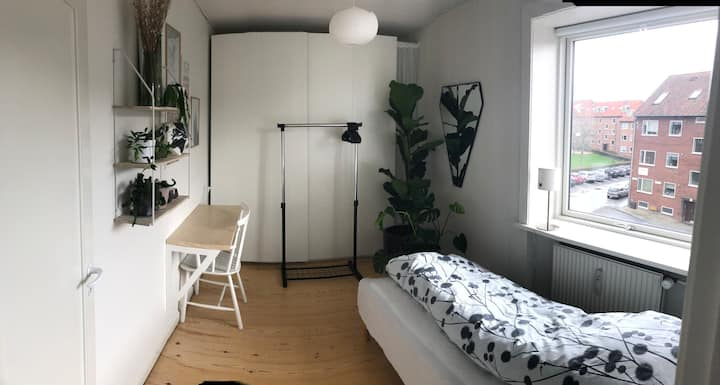 Cozy room for one