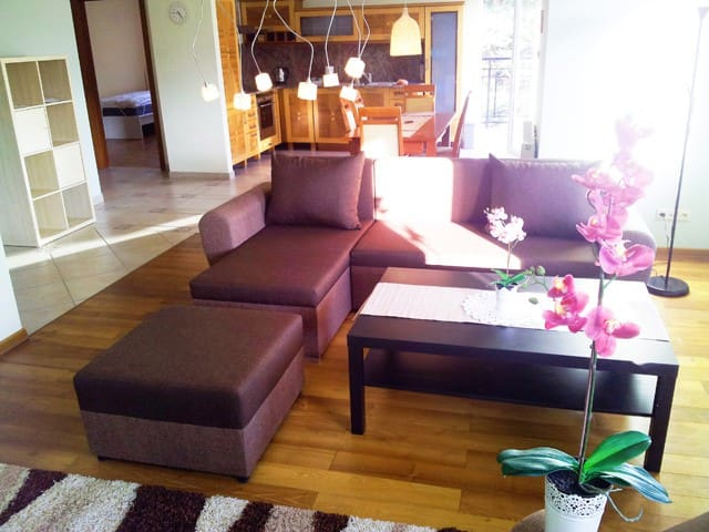 Apartament (Penthause) 120m2 with SAUNA, exclusive - Jastarnia - Flat