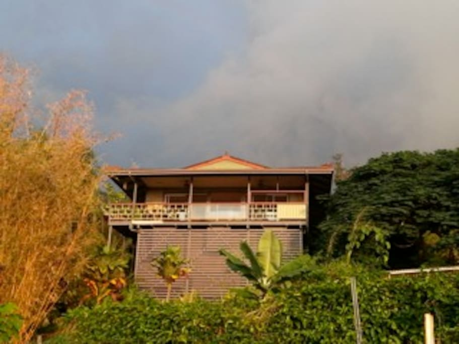 Honaunau Wellness Retreat Farm Guest House