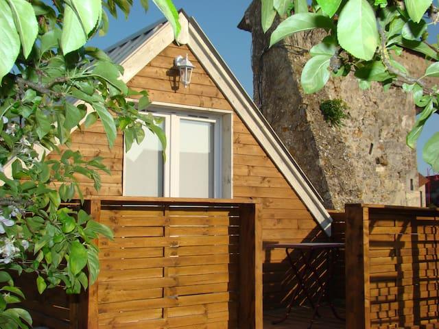 LE CHALET DU JARDIN - Aougny - Blockhütte