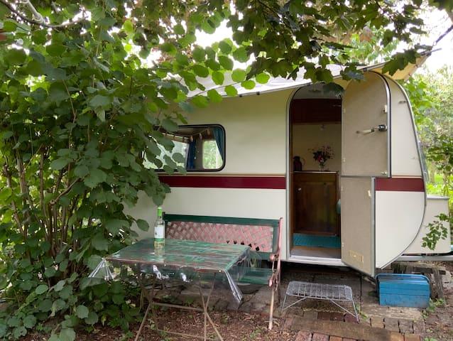 Stylischer 70 iger Jahre Wohnwagen mit Naturgarten