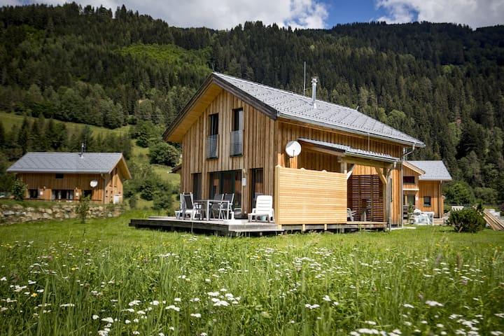 Chalet Bellevue voor ski en zomer