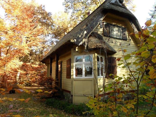 Reet gedecktes Holzhäuschen - Munster - House