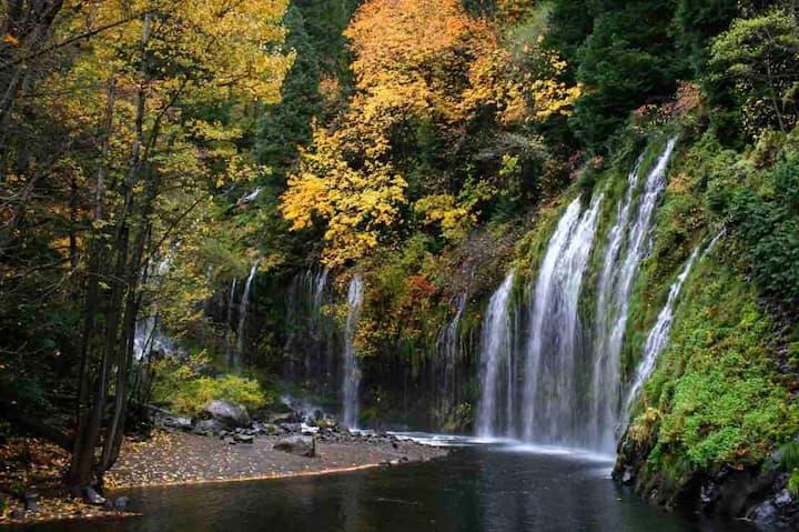The Bird's Nest, Walk to Waterfalls, Breakfast