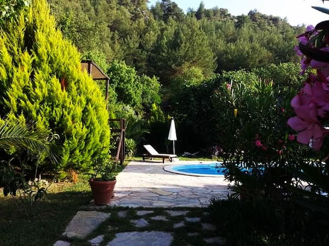 Villa Eden is a charming home with pool & garden - Kayaköy