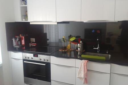 Occasional Rent My Apartment (Near Zurich) - Würenlos