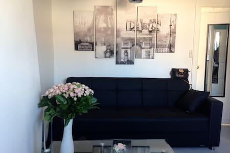 homestay accommodation (confortable sofa-bed) - Saint-Mandé - Apartment