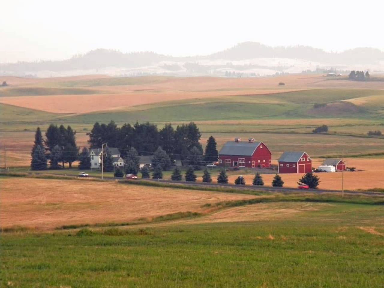 McCown Estate lies amidst the rolling hills of the Palouse.  Family owned for four generations.