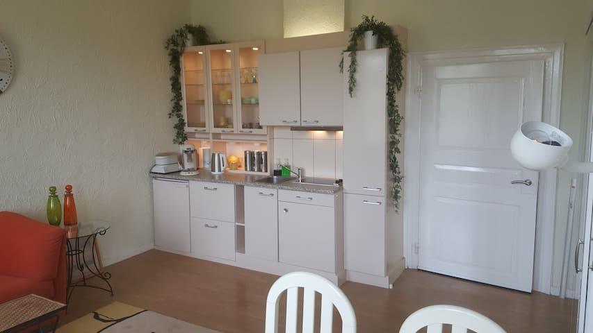 Keuken  groot apartement