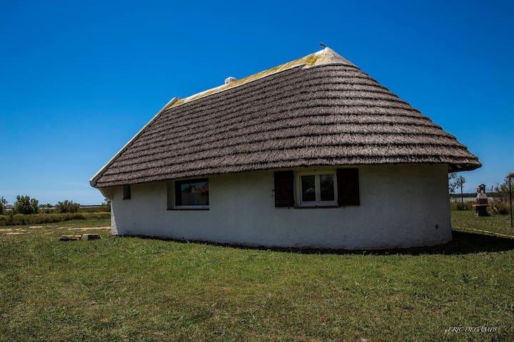 Cabane de Gardian en pleine nature