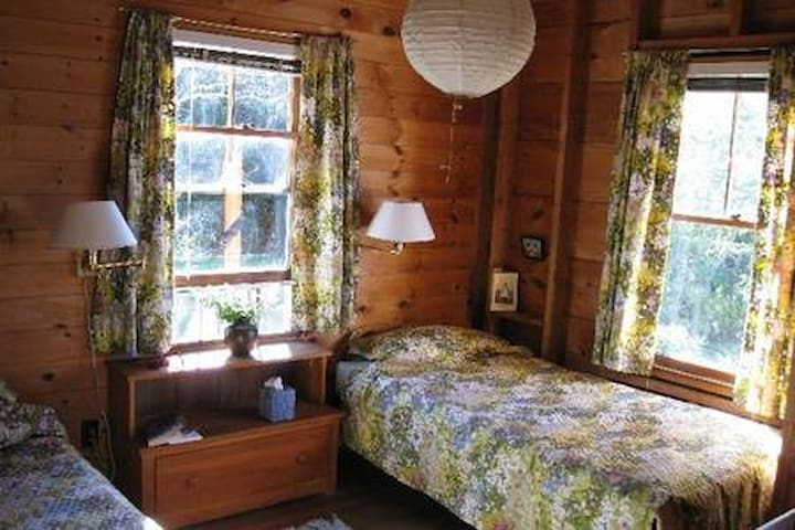 Downstairs bedroom, twin beds, windows east and south. Closet and chest of drawers.