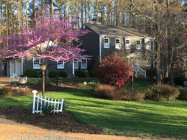 Sunny 4 BR home; wooded privacy + super comfort - Durham - Casa