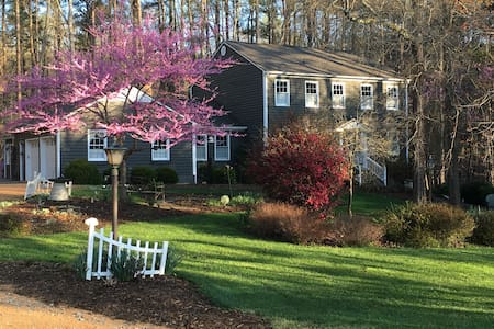 Sunny 4 BR home; wooded privacy + super comfort - Durham - House