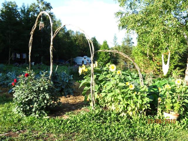 Roulotte au Jardin