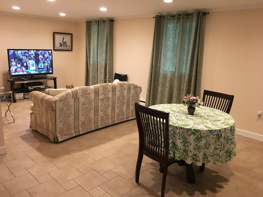 Lower level living/dining area