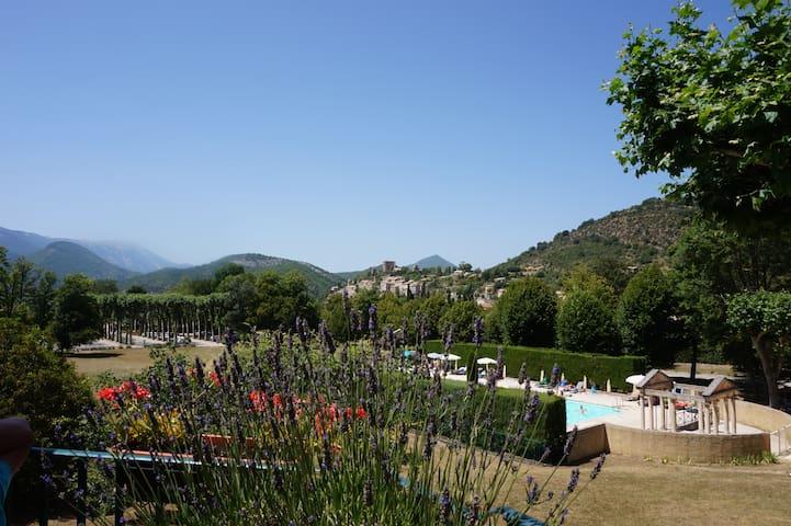 Dans le parc du Chateau des Gipières - Montbrun-les-Bains - Apartment