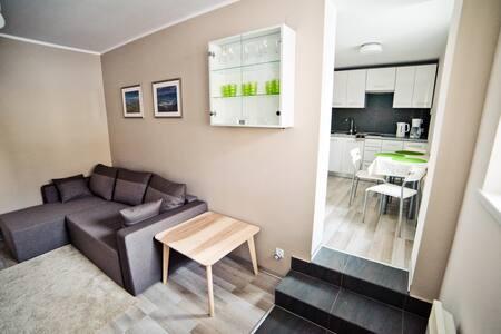 Komfortowy Apartament z ogródkiem - Krynica-Zdrój - 公寓
