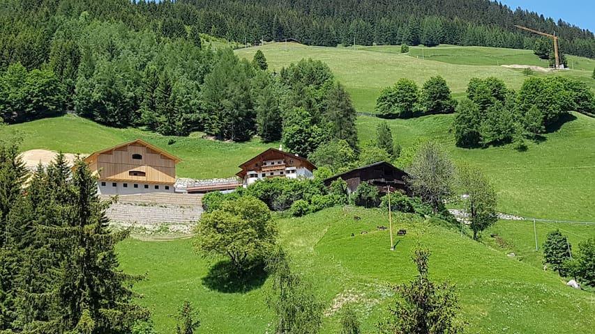 Eggerhütte im Sarntal