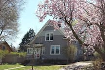 Beautiful 1920's home within walking distance to campus and Downtown Champaign. Quiet neighborhood on brick street. Truly a lot of character in this home