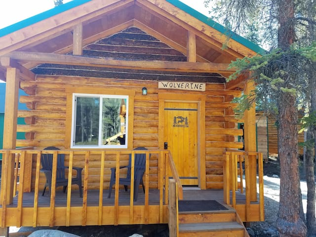 Cozy Wolverine Cabin Close to Park.....