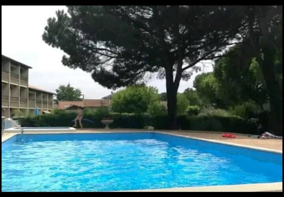 La piscine privée