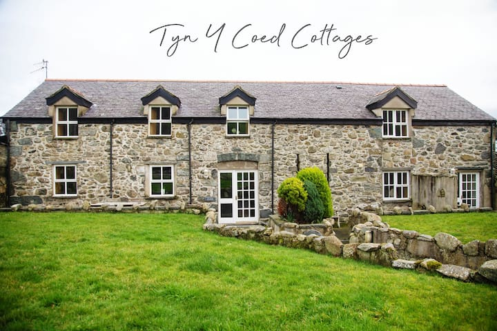 Cosy Mountain View Cottage in Snowdonia