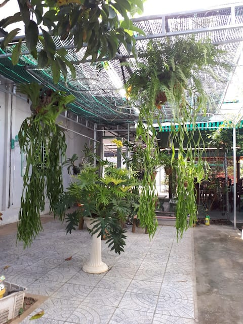 Duy Khuong Home Stay