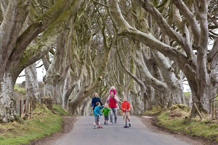 Dark Hedges Estate- The Hedges Hotel