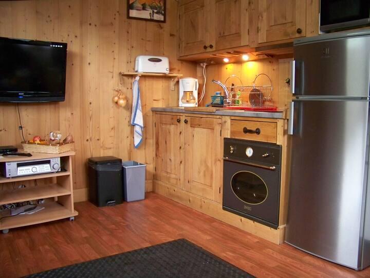 Les Carroz d'Araches: studio confortable