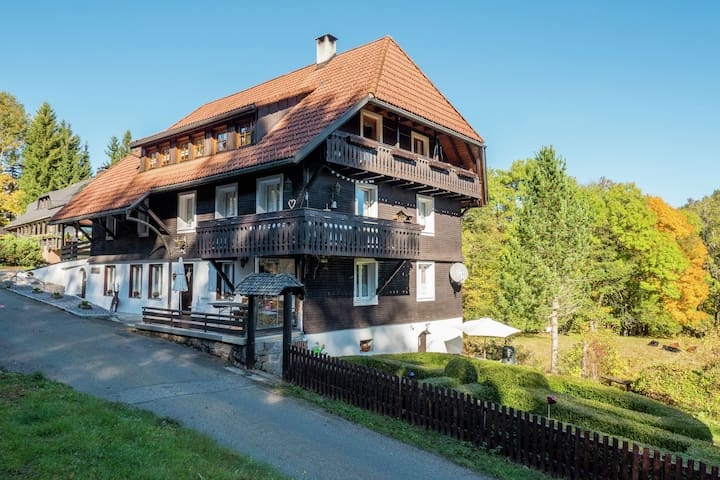 Apartment with covered balcony in the Black Forest near the Feldberg