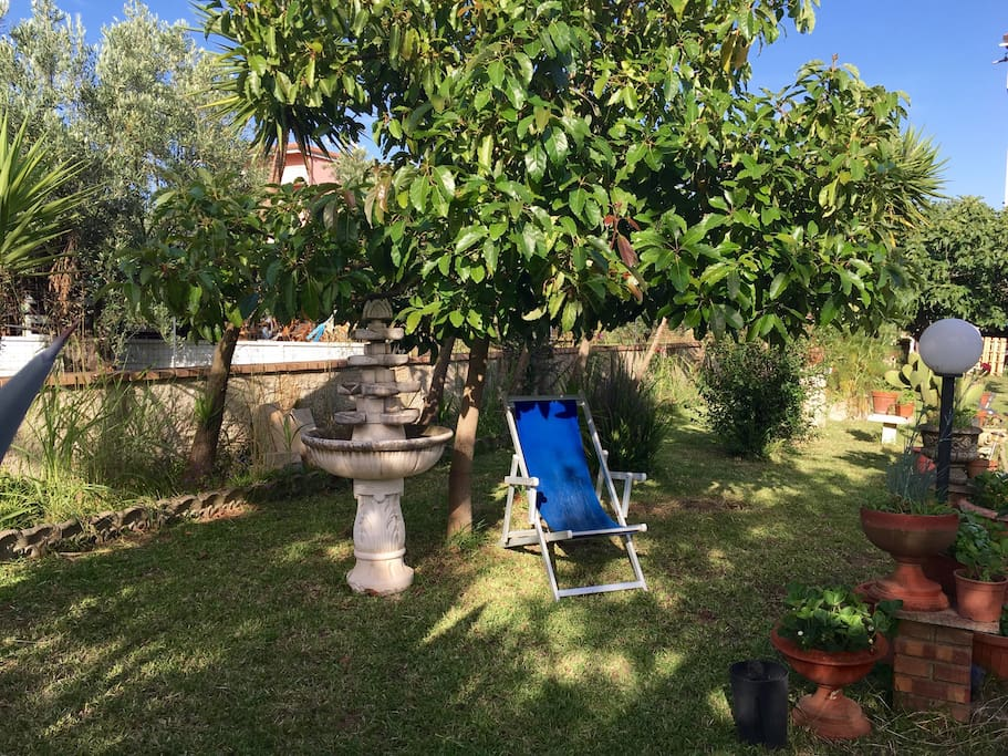 Relaxing under avocado tree