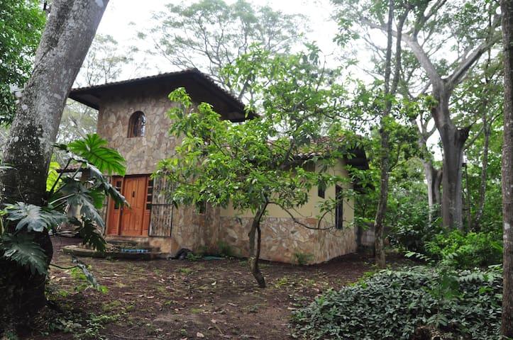Casa Cattaleya on a working organic farm.