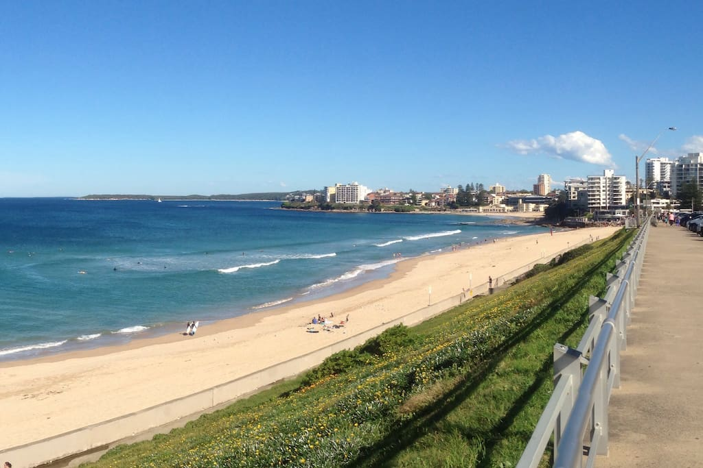 Nearby Cronulla Beach 2kms from my apartment.Quality Restaurants and Bars