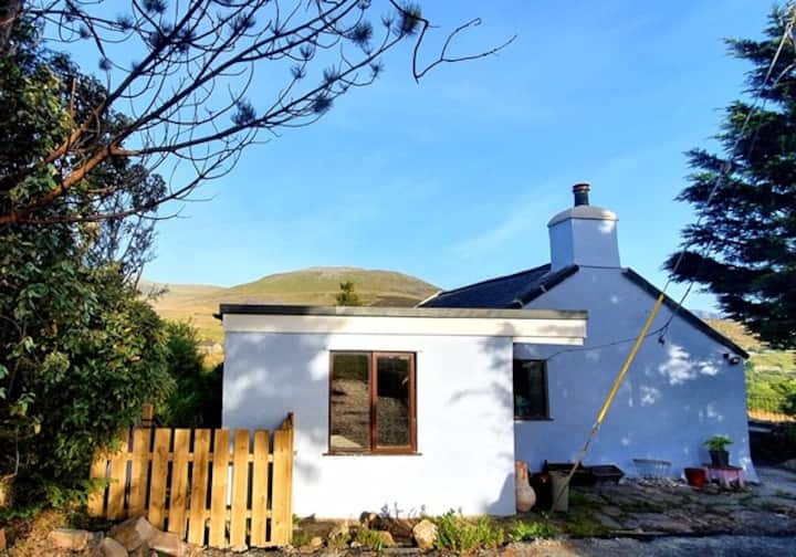 Traditional Snowdonia cottage - spectacular views
