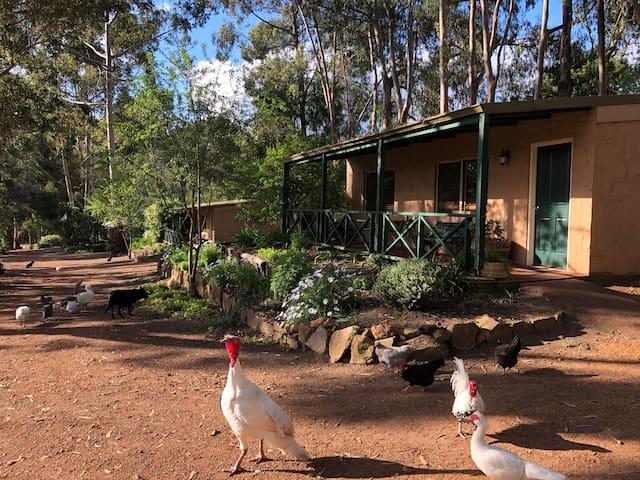 Country Cottages of Bridgetown, Pet Friendly!