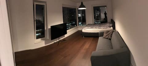 Brand new and modern Apartment