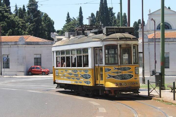 Cosy Double Room in Campo de Ourique, Lisbon