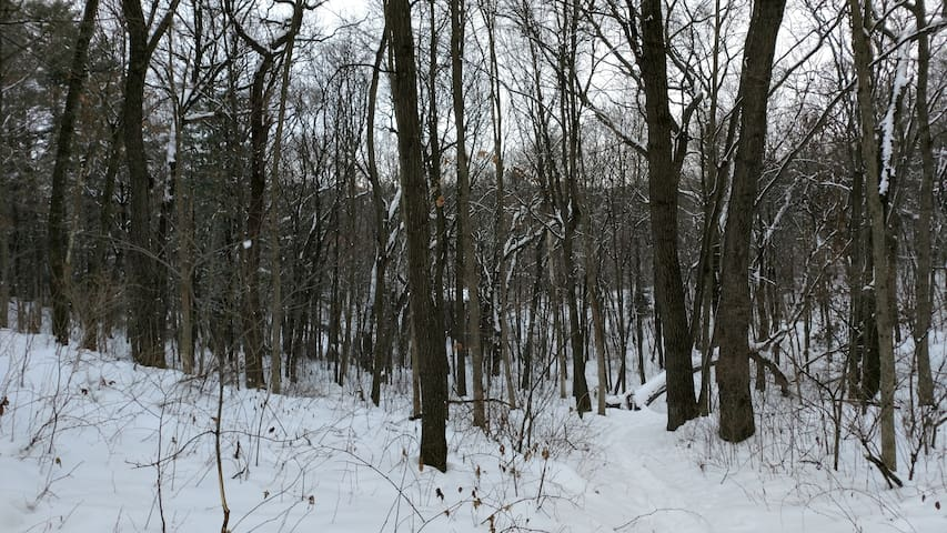 Driftless Nook - Westby - Hus